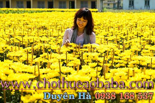 thue-ao-ba-ba-gia-re-o-dau-05